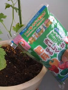 2009/05/04 肥料を追加